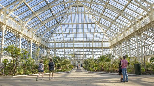 Paulina Sobzcat: Central space in the main glasshouse