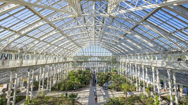 Paulina Sobzcat: The main glasshouse, restored, replanted, resplendent